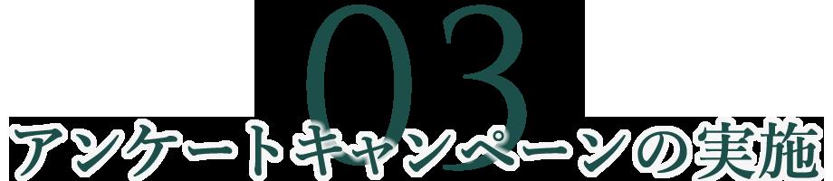 03 アンケートキャンペーンの実施